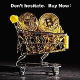 2PCS Bitcoin Coin,Bitcoin Gift Set with Display