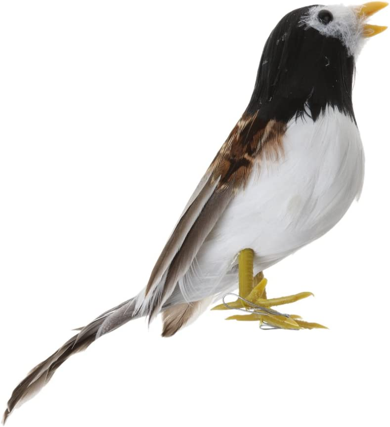 Black+White F Fityle 15Kinds Bird Fake Artificial Bird Realistic Taxidermy Natural Home Decor Toy Gift 12cm 12cm
