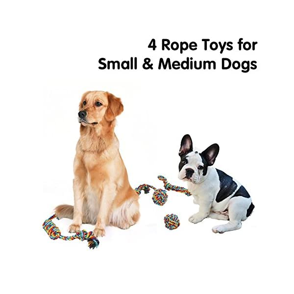 Vivifying 4 Pack Dog Rope Toys, Durable Braided Cotton Pet Chew Rope Toys for Pets Dog Puppy Teeth Cleaning Click on image for further info. 4