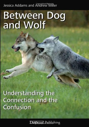 Between Dog Wolf Understanding Connection product image