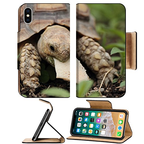 MSD Premium Apple iPhone X Flip Pu Leather Wallet Case African Spurred Tortoise Geochelone sulcata macro Image ID 23728937 (Food Tort)