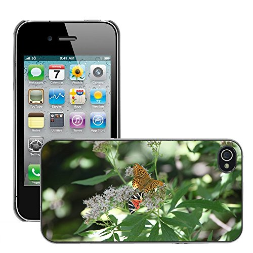 Bild Hart Handy Schwarz Schutz Case Cover Schale Etui // M00135744 Arctiidae Schmetterling cannabinum // Apple iPhone 4 4S 4G