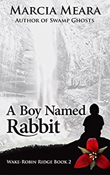 A Boy Named Rabbit: Wake-Robin Ridge Book 2 by [Meara, Marcia]