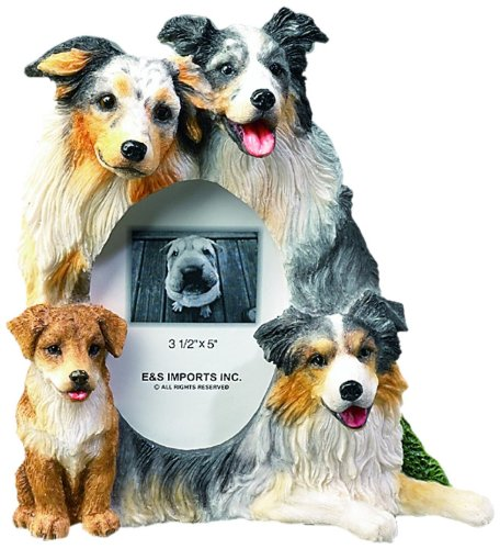 Australian Shepherd Gift Picture Frame Holds Your Favorite 3x5 Inch Photo, A Hand Painted Realistic Looking Australian Shepherd Family Surrounding Your Photo. This Beautifully Crafted Frame is A Unique Accent to Any Home or Office. The Australian Shepherd Picture Frame Is The Perfect Gift For Australian Shepherd Owners And Lovers!