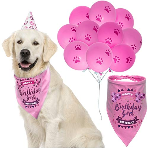 Clue Party Costumes Ideas - ZOOniq Dog Birthday Girl Bandana with