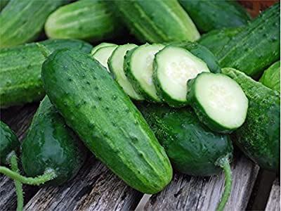 Cucumber, Boston Pickling Seeds, Organic , NON-GMO, 25 seeds per package, Pickling cucumbers are fun to grow, they are tender and tasty.