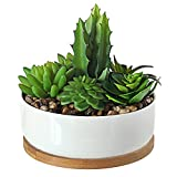 Artificial Succulent Plants in 6-Inch White Ceramic Planter with Bamboo Tray, Faux Cactus Decor