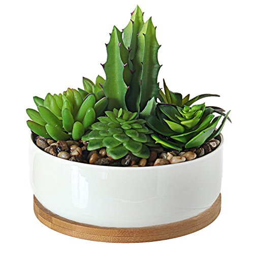 - MyGift Artificial Succulent Plant Arrangement in 6-Inch Ceramic Planter with Bamboo Tray