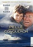 Buy Pelle the Conqueror