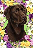 Chocolate Labrador – Tamara Burnett Easter Flowers Large Flags Review