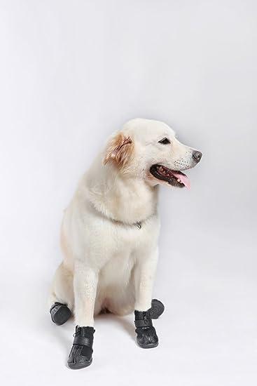 Lesypet Invernali Stivali Cane In Dog Pelle Scarpe Pet Vera qafzq