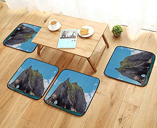 Printsonne Comfortable Chair Cushions Famous Elephant Shape Rock with The Grand Hole in Bay of Islands Nz Cavern Peace Reuse can be Cleaned W17.5 x L17.5/4PCS Set ()