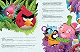 Stella and the Hunt for the Jade Egg (Angry Birds)