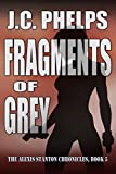Fragments of Grey: Book Five of The Alexis Stanton Chronicles