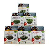 Mini Microgreens Growing Kit - Variety 6 Pack - Grow Your Own Organic Gourmet Micro Greens Indoors: Salad, Sandwich & Garnish - Easy & Fun - Great Gift or Stocking Stuffer (Variety 6 Pack)