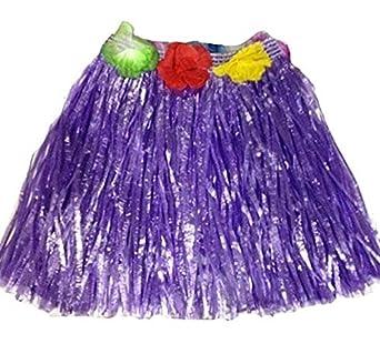 Amazon.com: Juego de falda hawaiana Hula para niños, para ...