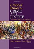 Critical Issues in Crime and Justice 1st Edition