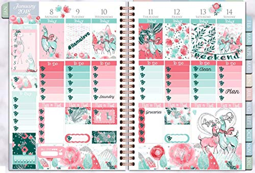 Llama Love Weekly Sticker Kit 6 sheets on matte. Erin Condren Life Planner or Happy Planner Create 365 sizes available. Kiss cut, just peel and stick.