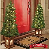 4-foot Tall lighted Porch Trees - Set of 2