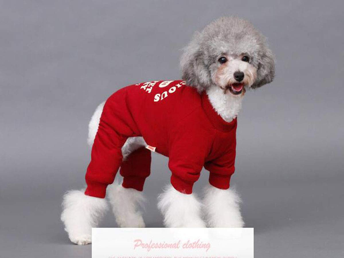 Red S Red S Pet Dog Clothes, Small and Medium Dogs, Autumn and Winter Clothes (color   Red, Size   S)