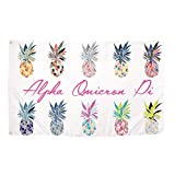 Alpha Omicron Pi Pop Art Pineapple Sorority Flag Banner Greek Letter Sign Decor AOII Review
