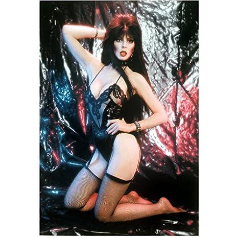 Elvira mistress images 61