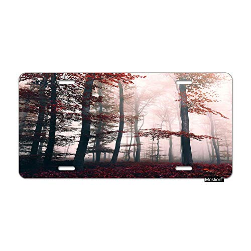 Moslion Forest License Plate Foggy Dreamy Forest Tree Maple Leaves Misty Sunlight in Autumn Car Tags Aluminum Metal Custom License Plate Cover 6x12 Inch for Truck SUV Red Grey