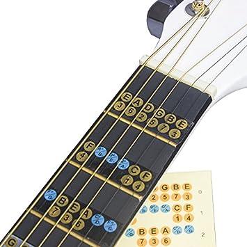 Guitarra escala adhesivo Guitarra Diapasón notas mapa etiquetas Fret adhesivo adhesivos para principiantes: Amazon.es: Instrumentos musicales