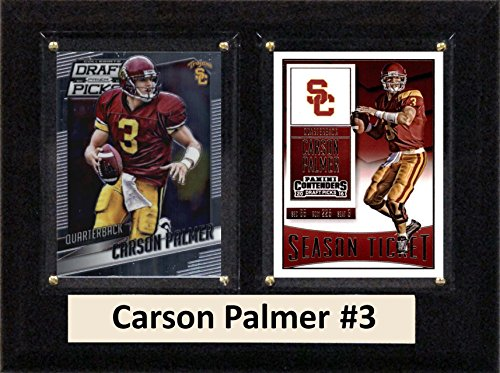 - C&I Collectables NCAA USC Trojans Men's Carson Palmer Two Card Plaque, Brown, 6