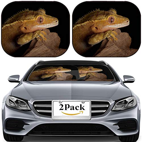 MSD Car Sun Shade for Windshield Universal Fit 2 Pack Sunshade, Block Sun Glare, UV and Heat, Protect Car Interior, A Female Crested Gecko Stares Over a Jagged Cliff at Night Image ID 11851875 (Gecko Sunshade)