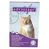 Advantage Flea Control Purple: For cats over 9 lbs. 4 Month, My Pet Supplies