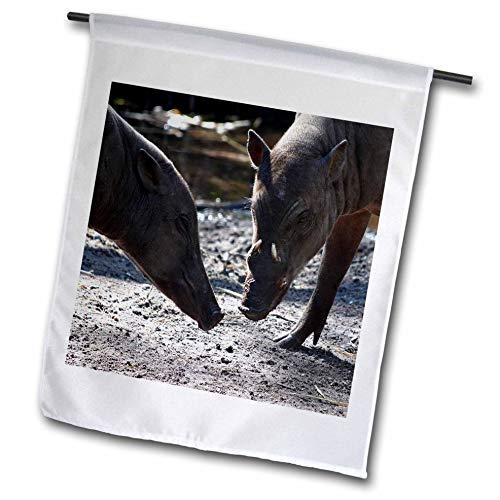 3dRose Susans Zoo Crew Animal - Two Warthog Pigs Wild Animals - 18 x 27 inch Garden Flag -