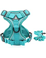 Cat Dog Harness with Leash No-Pull Pet Harness Dog Vest for Walking Escape Proof Adjustable Breathable with Reflective Strip for Small Medium Cats Kittens Dogs Puppies