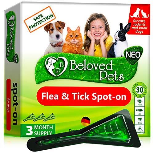 Flea and Tick Prevention for Dogs and Cats – Natural Flea Treatment for Pets Kittens Puppies – 100% Immediate Super Effect – 3 Months Supply – Flea and Tick Repellent Control… (Small)