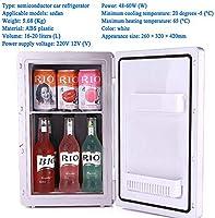 HNFYJQ Refrigerador de 12V-220V y refrigerador Cooler Cool Box ...
