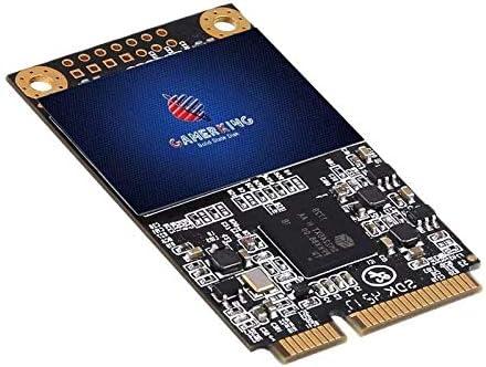 Gamerking Msata 256GB SSD Unidad de Estado sólido Interna Unidad de Disco Duro de Alto Rendimiento para computadora portátil de Escritorio SATA II 6Gb / s SSD (256G B, Msata): Amazon.es: Electrónica