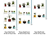 Hanging Window Plant Shelves (3 Shelves)