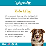 Advanced-Hip-and-Joint-Supplement-for-dogs-with-Chondroitin-MSM-and-Glucosamine-for-Dogs-by-WagWorthy-Naturals-Improves-Mobility-Arthritis-Pain-Relief-for-Dogs-60-Chewable-Tablets-Made-in-USA