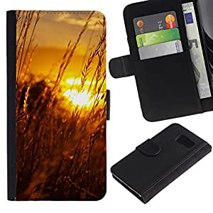 All Phone Most Case / Oferta Especial Cáscara Funda de cuero Monedero Cubierta de proteccion Caso / Wallet Case for Sony Xperia Z3 Compact // Sunset Beautiful Nature 61
