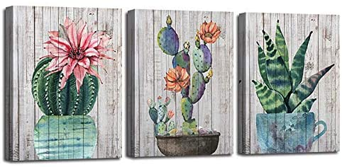 Canvas Wall Art Prints Watercolor Ball Cactus Cacti Green Plants and Flower Painting Vintage Wood Background Pictures Succulent Poster Artwork 12x16 3 Panels/Set for Bedroom Bathroom Spa Salon Kitchen Home Office Decor