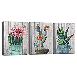 Canvas Wall Art Prints Watercolor Ball Cactus Cacti Green Plants and Flower Painting Pictures, Succulent Poster Artwork 12″x16″ 3 Panels/Set for Bedroom Bathroom Spa Salon Kitchen Home Office Decor