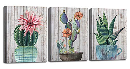 (Canvas Wall Art Prints Watercolor Ball Cactus Cacti Green Plants and Flower Painting Pictures, Succulent Poster Artwork 12