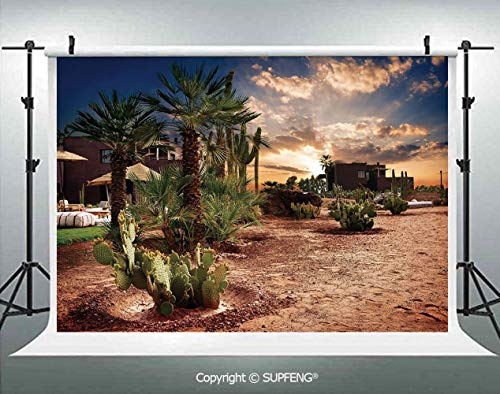 Background Majestic Sky View Palm Trees and Cactus in Oasis Morocco Tropic Nature 3D Backdrops for Interior Decoration Photo Studio - Oasis Curtain