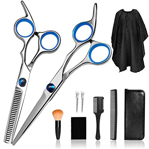AIRERA 10 Pieces Professional Hair Cutting Scissors Set, 6.5 InchHair Scissors Set, Salon Stainless Steel Scissors with Feather Razor, Thinning Shears, Razor Comb, Hair Shears (Silver)