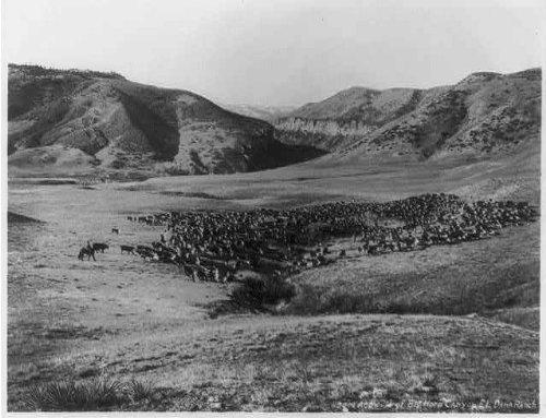 Infinite Photographs Photo: Big Horn Canyon, Before Dam, E.L. Dana Ranch