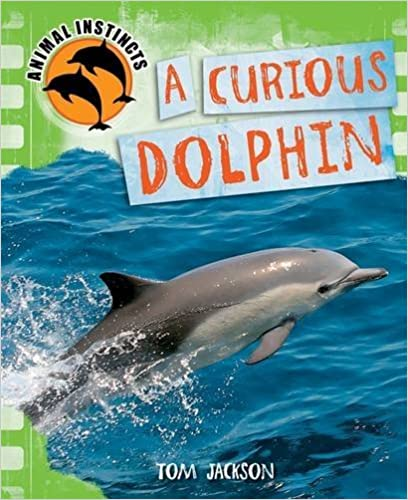 A Curious Dolphin (Animal Instincts)