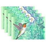 Naanle Animal Bird Placemat Set of 6, Hummingbird Watercolor Painting Heat-Resistant Washable Table Place Mats for Kitchen Dining Table Decoration