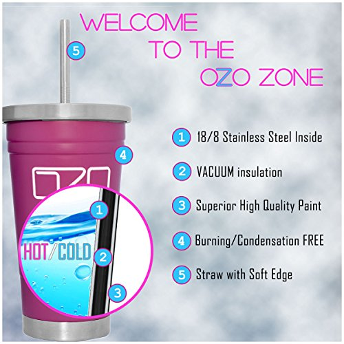 The Tumbler by OZO Premium Stainless aluminum hoover Insulated vacation Mug warm or Cold Drinks with Straw and Brush 16oz capacity in Matte Pink Commuter vacation Mugs