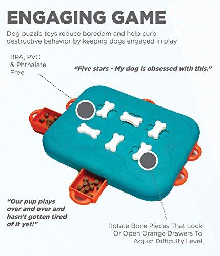 Outward Hound Nina Ottosson Dog Casino Dog Puzzle Toy Dog Game 3