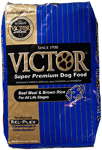 Victor Beef Meal & Brown Rice Dry Dog Food, 40-Pound